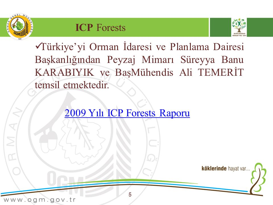2009 Yılı ICP Forests Raporu