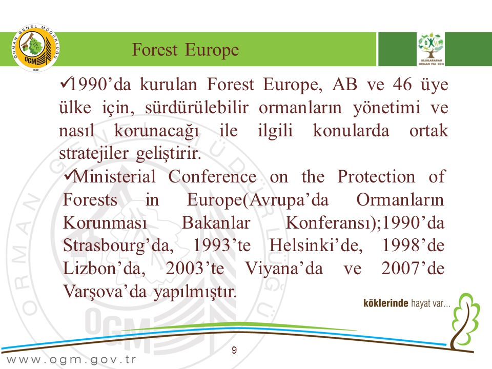Forest Europe