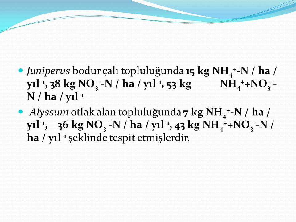 Juniperus bodur çalı topluluğunda 15 kg NH4+-N / ha / yıl-1, 38 kg NO3--N / ha / yıl-1, 53 kg NH4++NO3--N / ha / yıl-1