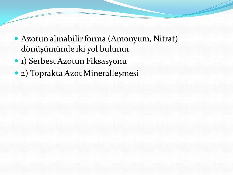 Azotun alınabilir forma (Amonyum, Nitrat) dönüşümünde iki yol bulunur