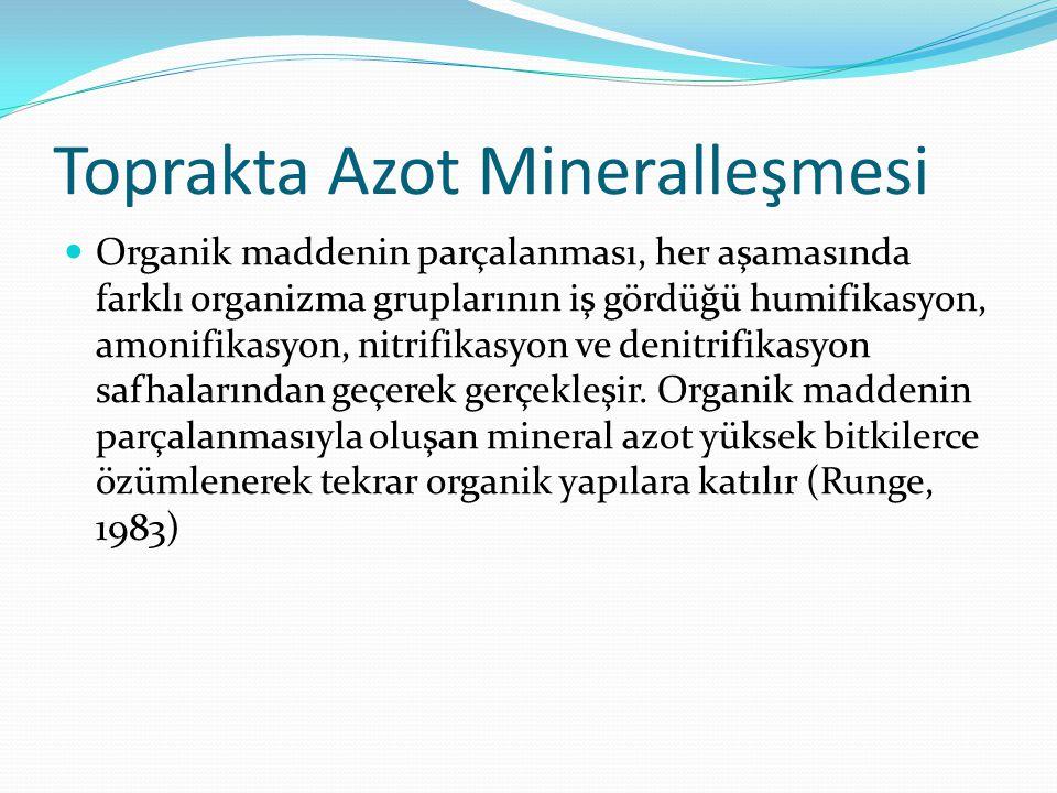 Toprakta Azot Mineralleşmesi