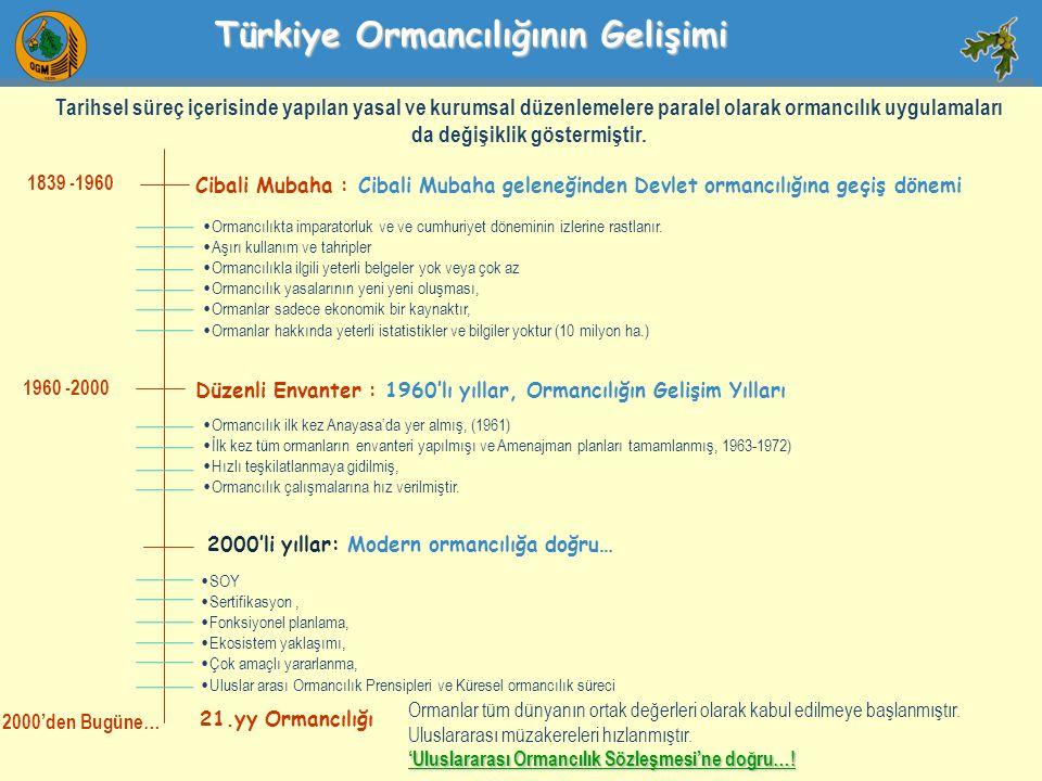 Türkiye Ormancılığının Gelişimi