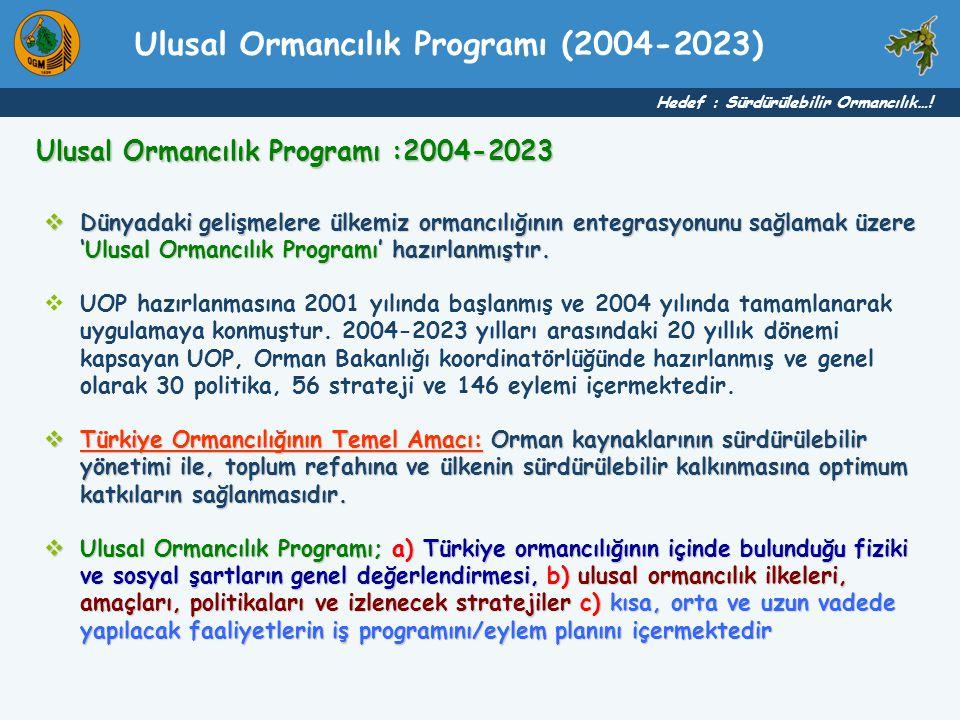Ulusal Ormancılık Programı (2004-2023)