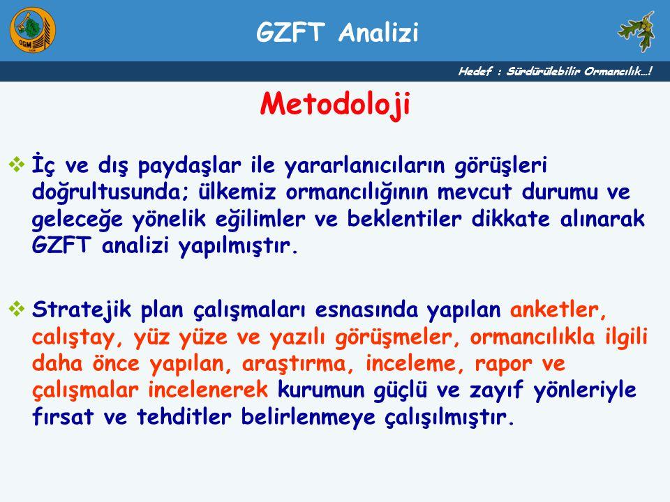 Metodoloji GZFT Analizi