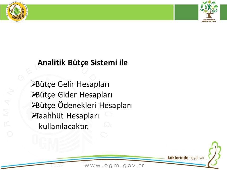 Analitik Bütçe Sistemi ile