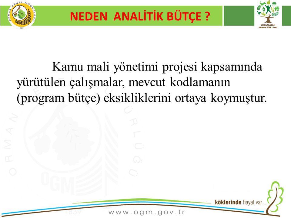 NEDEN ANALİTİK BÜTÇE Kurumsal Kimlik. 16/12/2010.