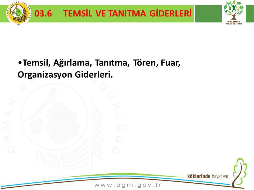 03.6 TEMSİL VE TANITMA GİDERLERİ