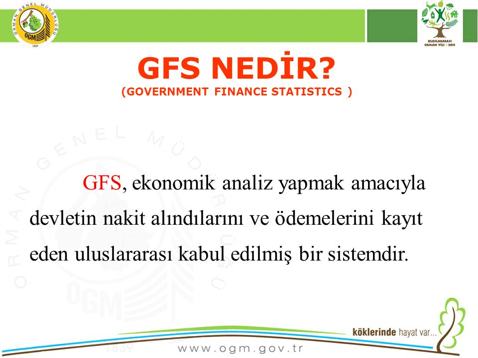GFS NEDİR (GOVERNMENT FINANCE STATISTICS )