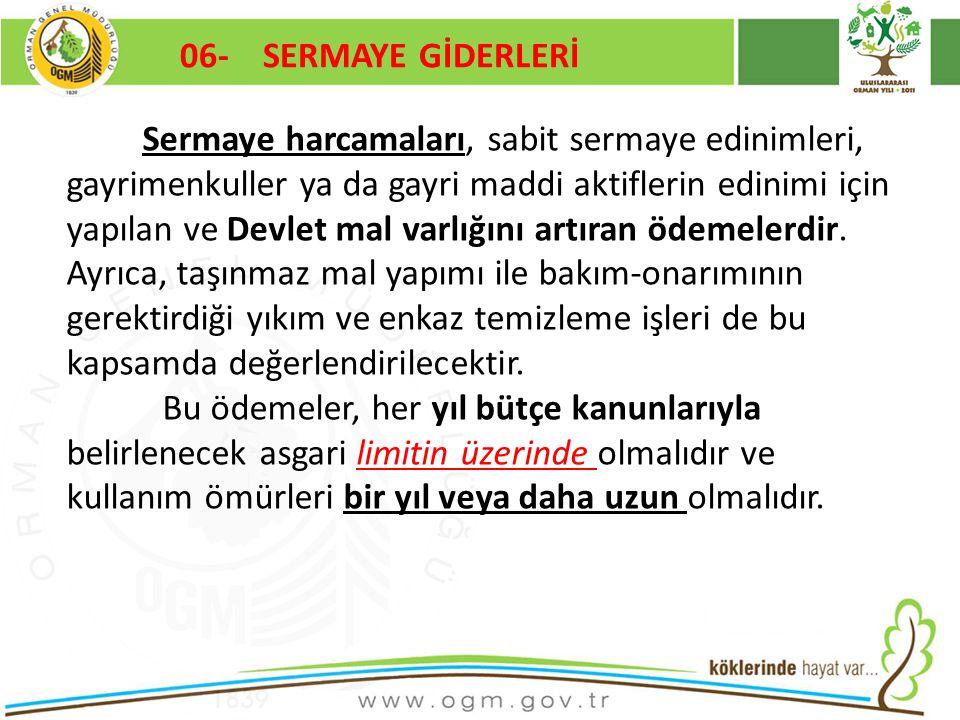 06- SERMAYE GİDERLERİ Kurumsal Kimlik. 16/12/2010.