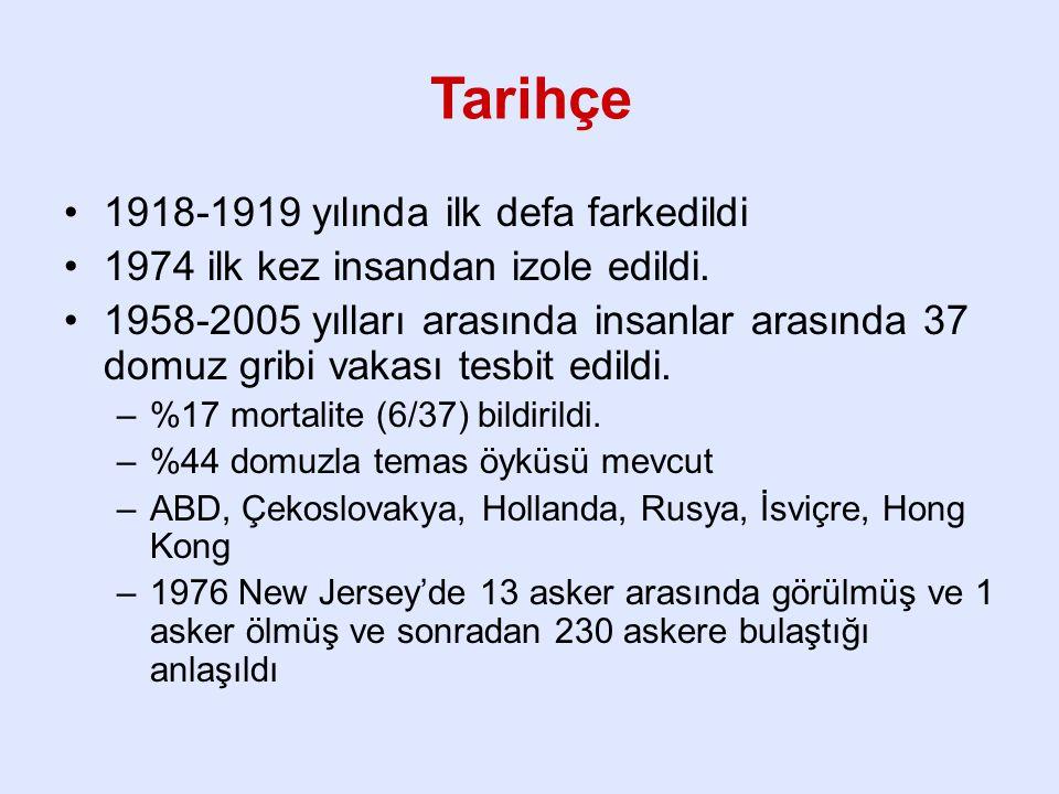 Tarihçe 1918-1919 yılında ilk defa farkedildi