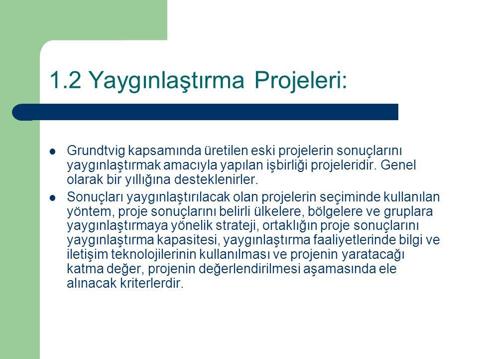 1.2 Yaygınlaştırma Projeleri: