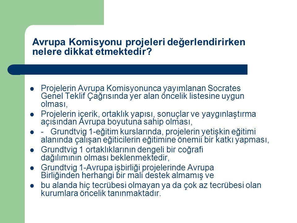 Avrupa Komisyonu projeleri değerlendirirken nelere dikkat etmektedir