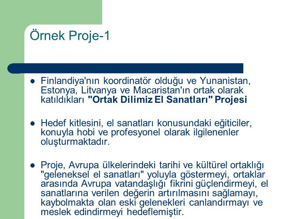 Örnek Proje-1