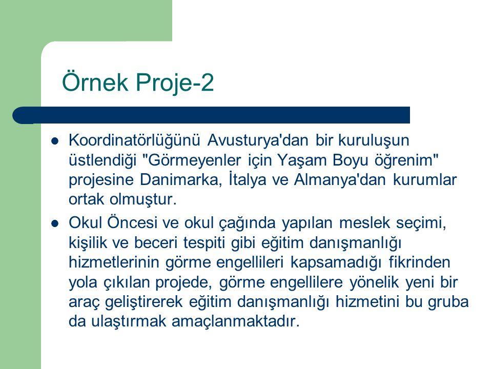 Örnek Proje-2