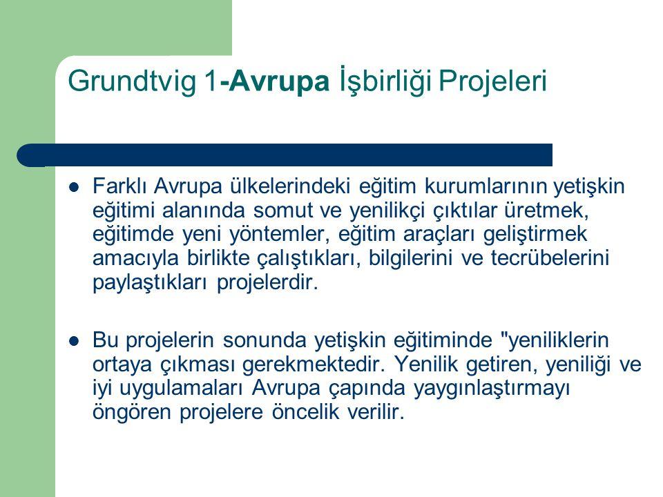 Grundtvig 1-Avrupa İşbirliği Projeleri
