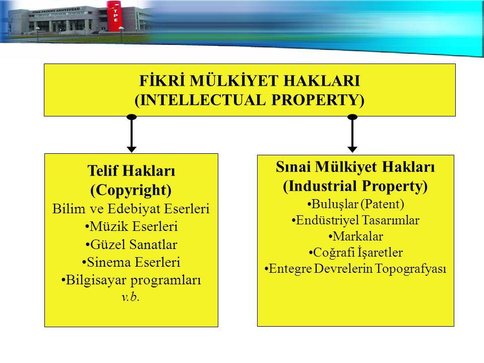 FİKRİ MÜLKİYET HAKLARI (INTELLECTUAL PROPERTY)