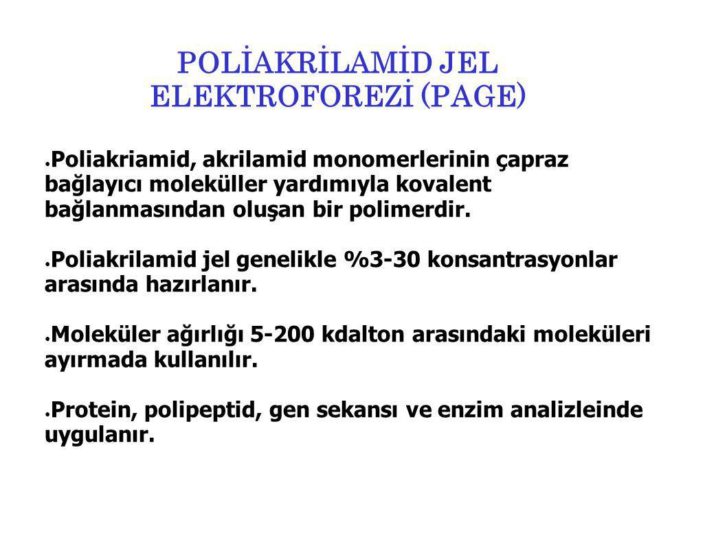 POLİAKRİLAMİD JEL ELEKTROFOREZİ (PAGE)