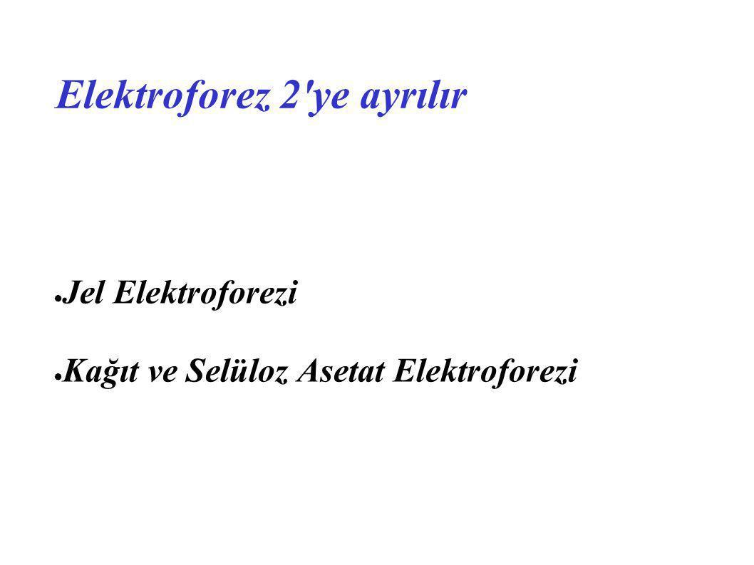 Elektroforez 2 ye ayrılır