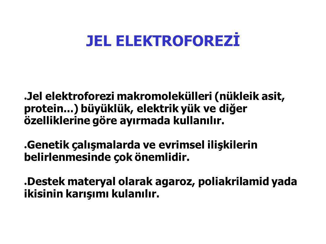 JEL ELEKTROFOREZİ