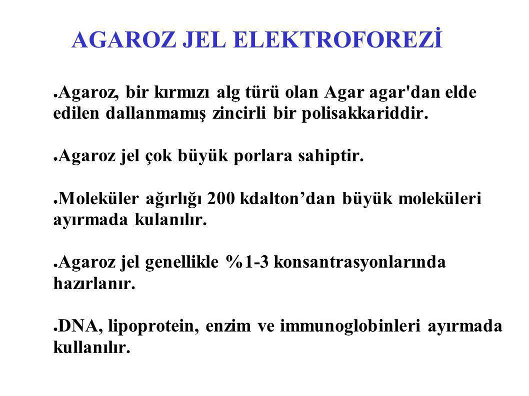 AGAROZ JEL ELEKTROFOREZİ