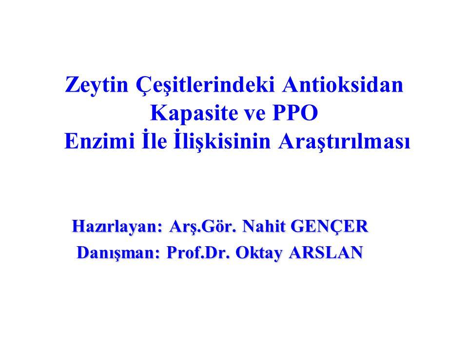 Hazırlayan: Arş.Gör. Nahit GENÇER Danışman: Prof.Dr. Oktay ARSLAN