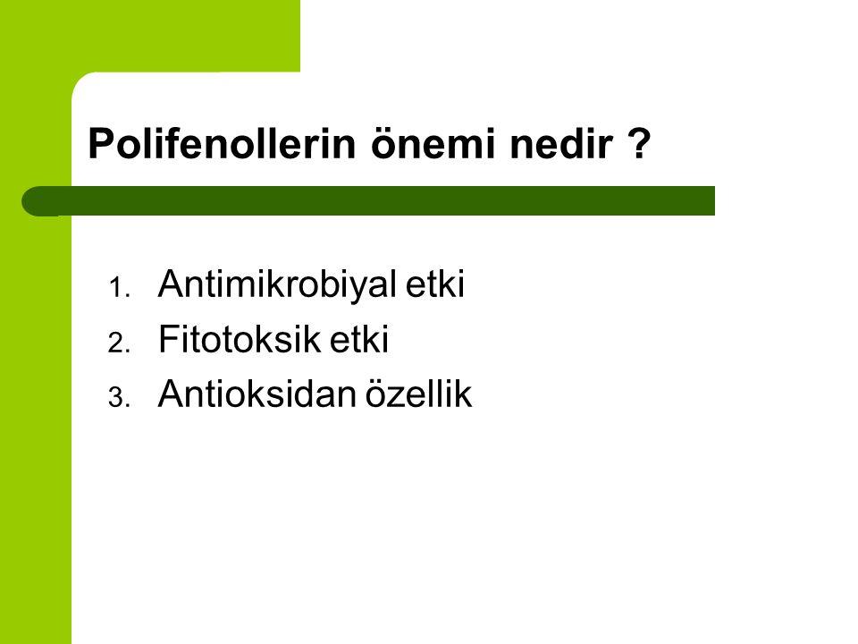 Polifenollerin önemi nedir