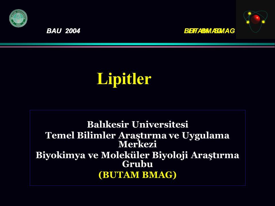 Lipitler Balıkesir Universitesi