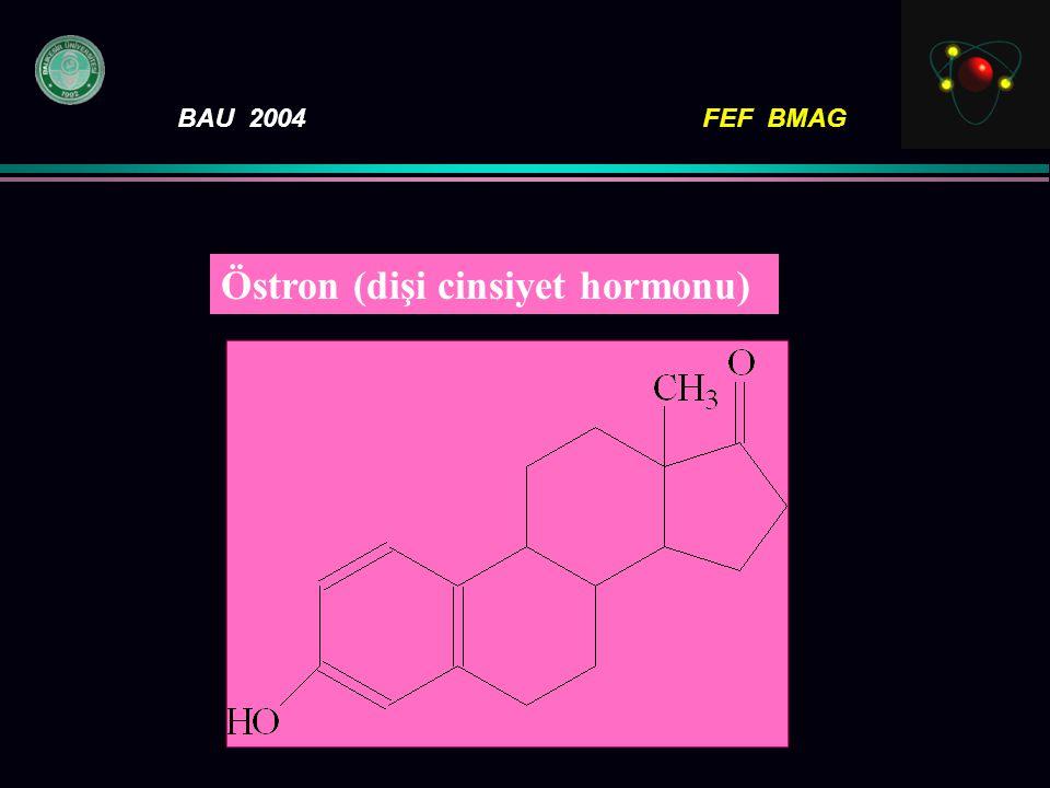 Östron (dişi cinsiyet hormonu)
