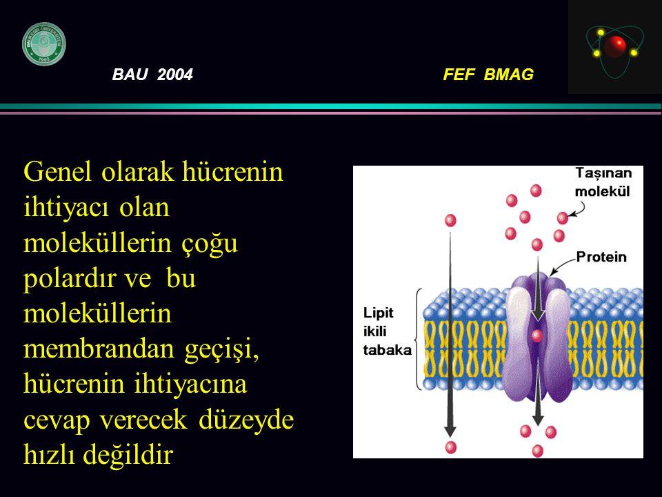 Genel olarak hücrenin ihtiyacı olan moleküllerin çoğu polardır ve bu moleküllerin membrandan geçişi, hücrenin ihtiyacına cevap verecek düzeyde hızlı değildir