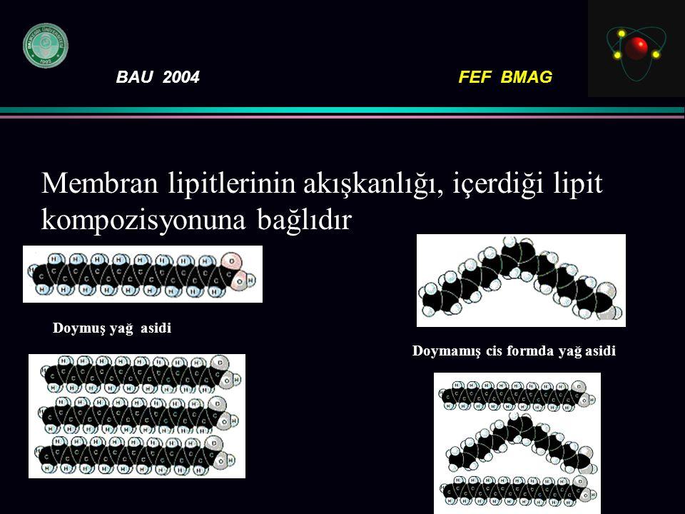 Membran lipitlerinin akışkanlığı, içerdiği lipit kompozisyonuna bağlıdır