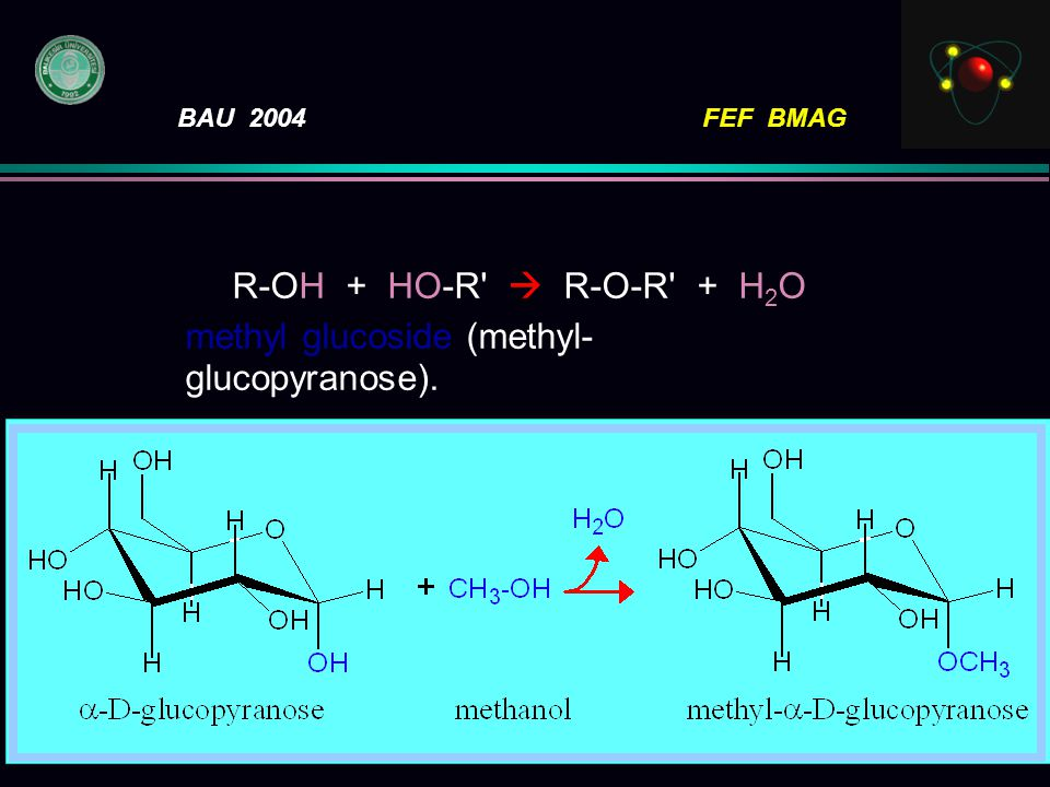 R-OH + HO-R  R-O-R + H2O methyl glucoside (methyl-glucopyranose).
