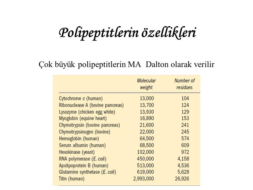 Polipeptitlerin özellikleri
