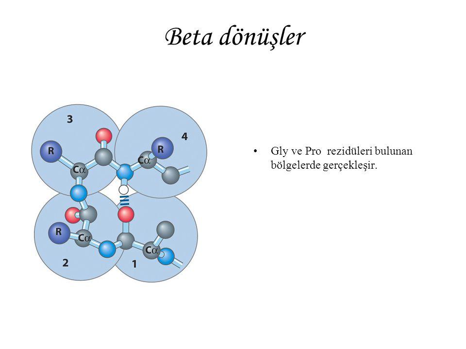 Beta dönüşler Gly ve Pro rezidüleri bulunan bölgelerde gerçekleşir.