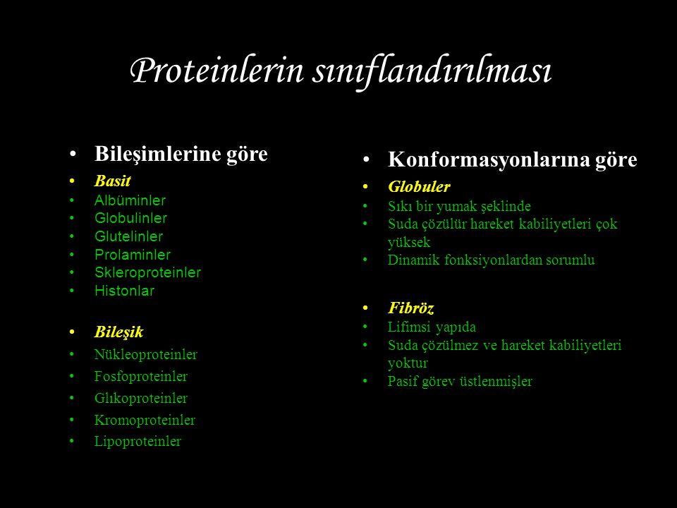 Proteinlerin sınıflandırılması
