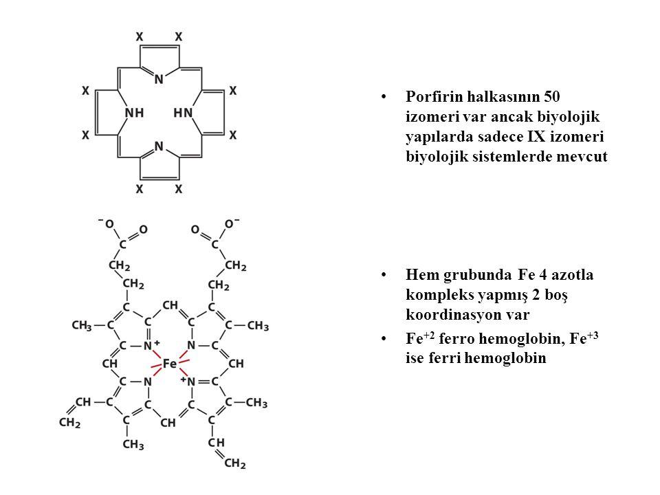 Porfirin halkasının 50 izomeri var ancak biyolojik yapılarda sadece IX izomeri biyolojik sistemlerde mevcut