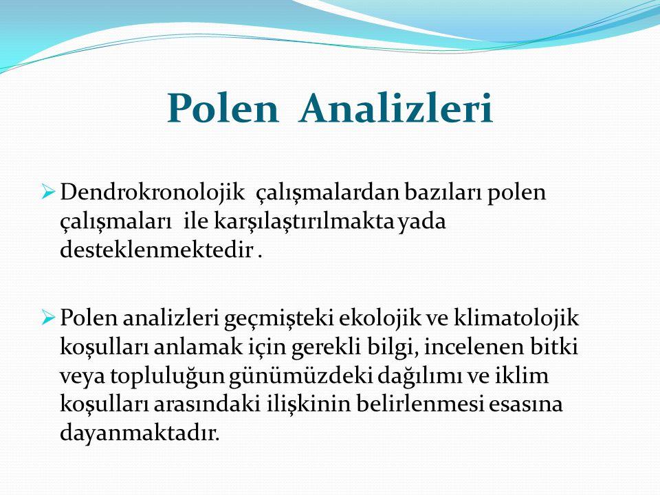 Polen Analizleri Dendrokronolojik çalışmalardan bazıları polen çalışmaları ile karşılaştırılmakta yada desteklenmektedir .
