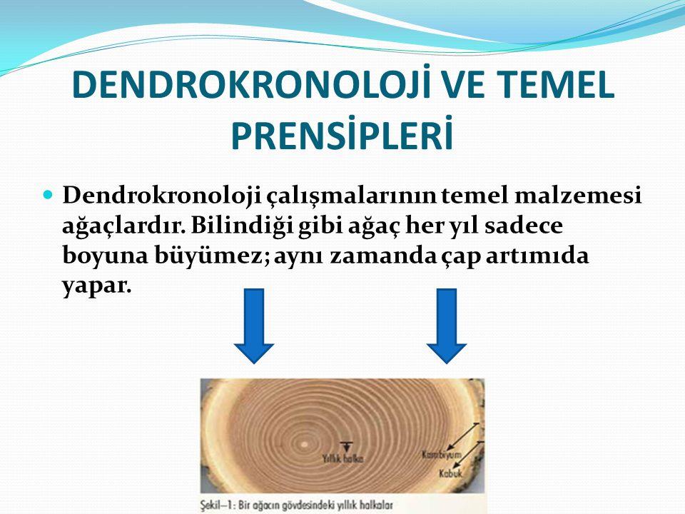 DENDROKRONOLOJİ VE TEMEL PRENSİPLERİ