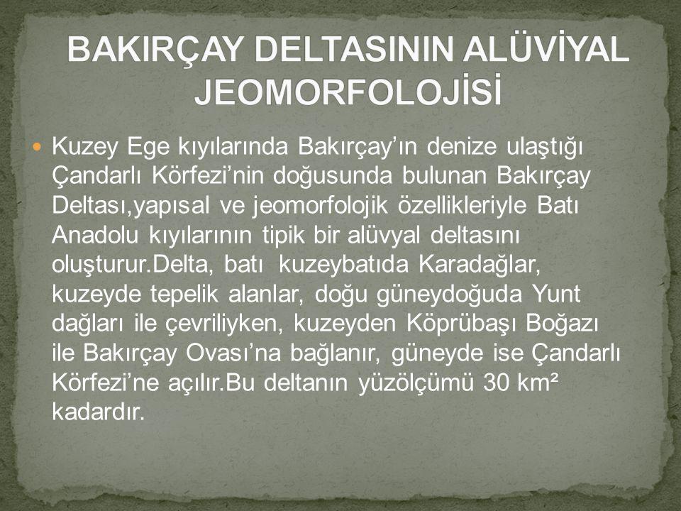 BAKIRÇAY DELTASININ ALÜVİYAL JEOMORFOLOJİSİ
