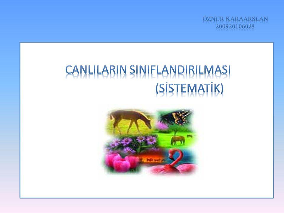 CANLILARIN SINIFLANDIRILMASI (SİSTEMATİK)