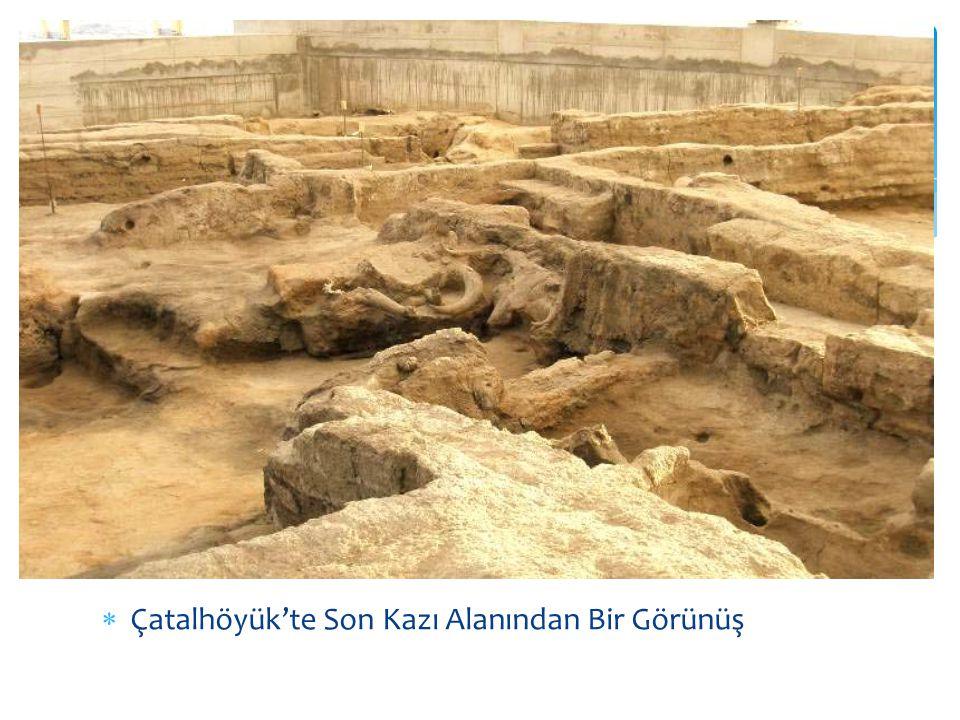 Çatalhöyük'te Son Kazı Alanından Bir Görünüş