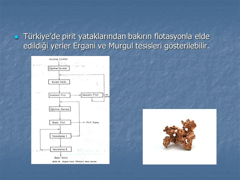 Türkiye'de pirit yataklarından bakırın flotasyonla elde edildiği yerler Ergani ve Murgul tesisleri gösterilebilir.