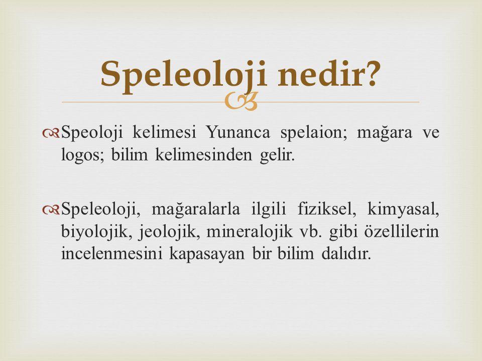 Speleoloji nedir Speoloji kelimesi Yunanca spelaion; mağara ve logos; bilim kelimesinden gelir.