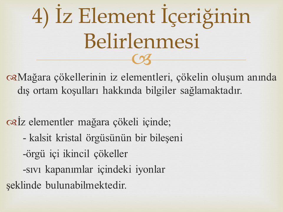 4) İz Element İçeriğinin Belirlenmesi