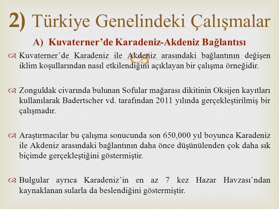 2) Türkiye Genelindeki Çalışmalar