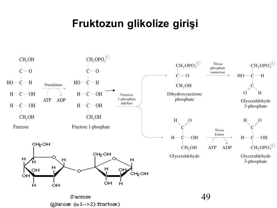 Fruktozun glikolize girişi