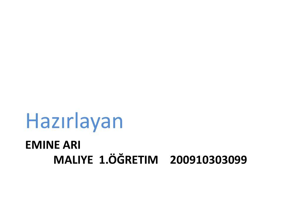 Emine ari maliye 1.öğretim 200910303099