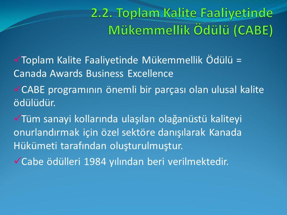 2.2. Toplam Kalite Faaliyetinde Mükemmellik Ödülü (CABE)