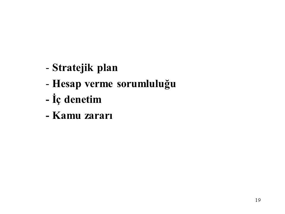 Stratejik plan Hesap verme sorumluluğu - İç denetim - Kamu zararı