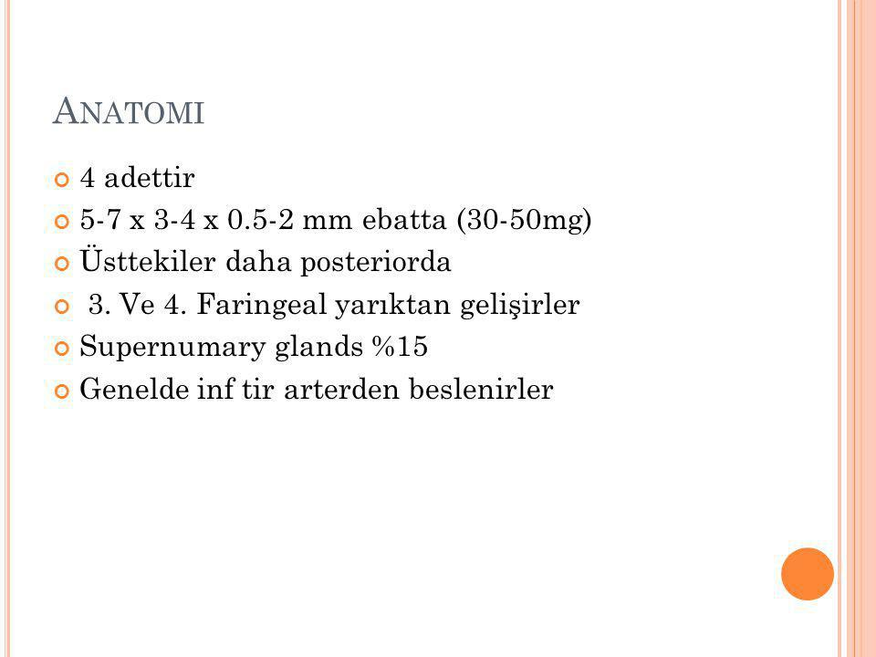 Anatomi 4 adettir 5-7 x 3-4 x 0.5-2 mm ebatta (30-50mg)