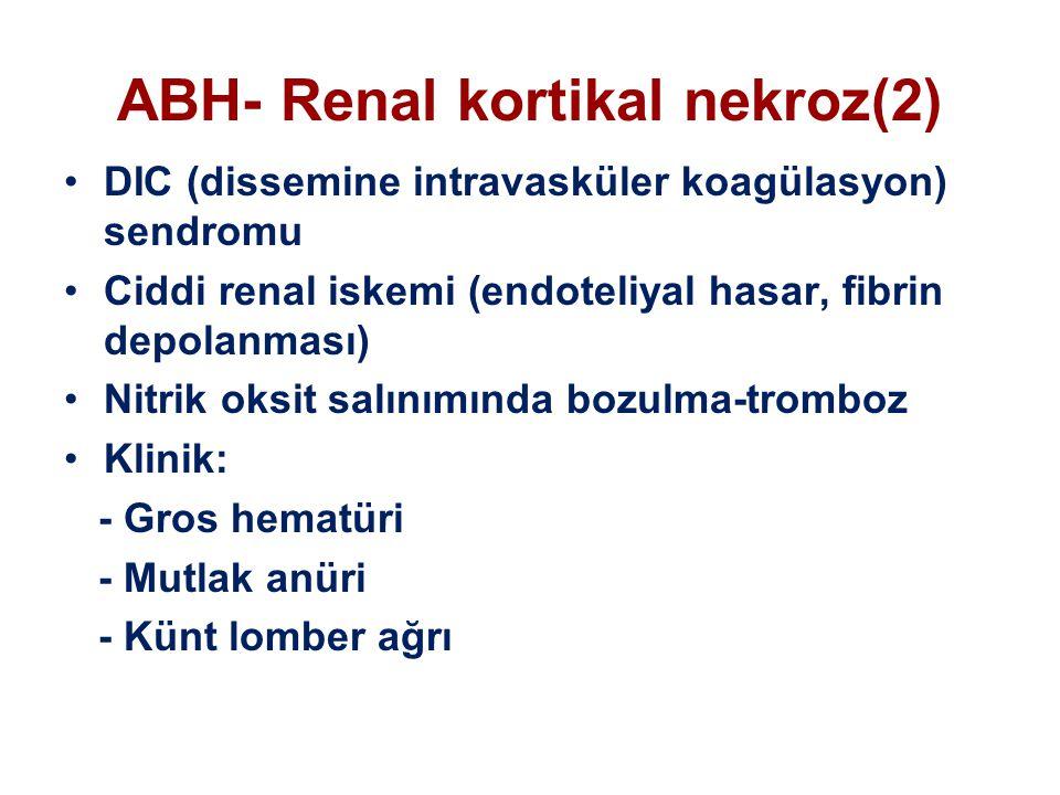 ABH- Renal kortikal nekroz(2)